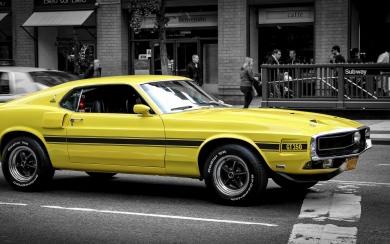 Download Mustang Wallpaper Getwallsio